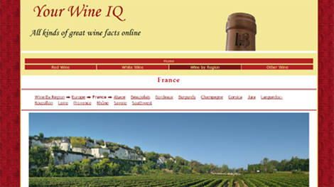 Your Wine IQ